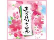 春待ち茶 緑茶ティーバッグ 5g×2
